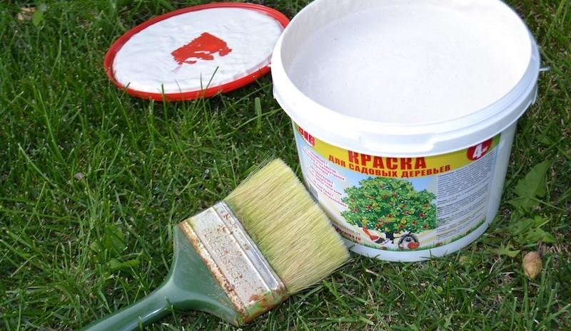 Краска для побелки деревьев