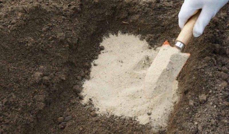 Песок для почвы