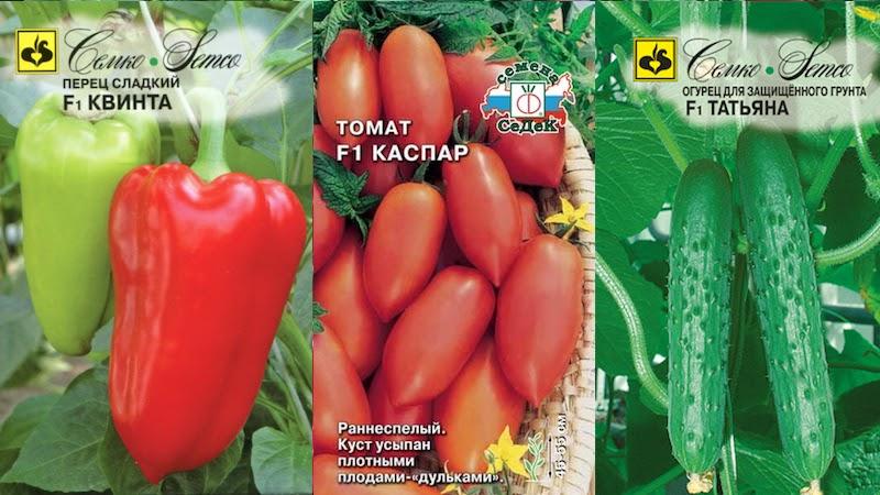 Семена гибриды огурцы помидоры перцы
