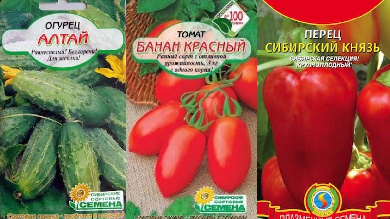 Сортовые семена томатов, перцев, огурцов