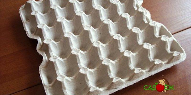 Полезное применение бумажных лотков для яиц в огороде: часть 1
