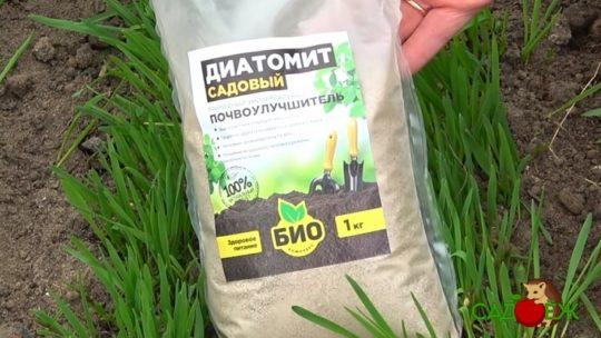Для чего использовать диатомит в огороде