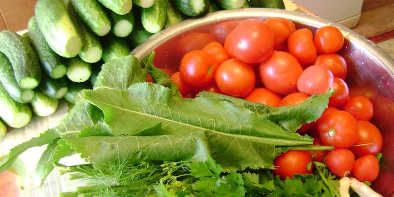 Засолка огурцов и помидоров
