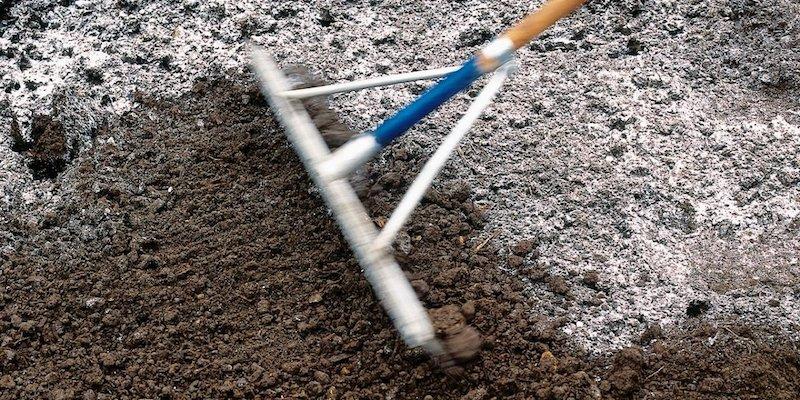 Зола для раскисления почвы