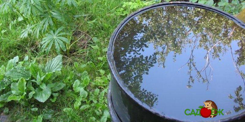 Что сделать, чтобы бочки с водой зимой не лопнули?