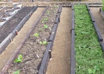 Как сделать садовые дорожки  на даче своими руками из подручных средств