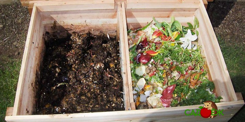 Как подготовить компостную яму к зиме?