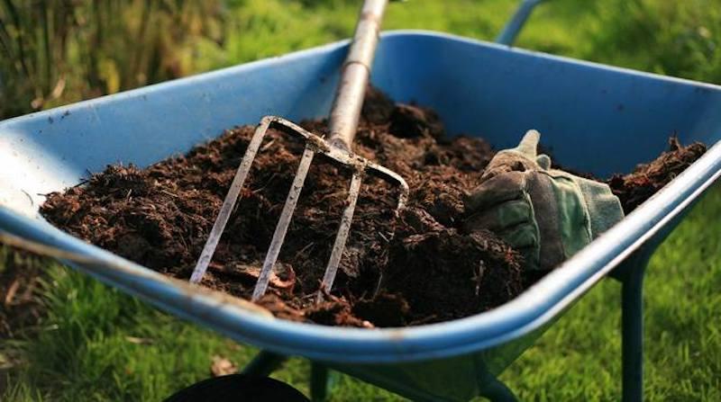 Органика для огорода