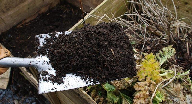 Компост для повышения плодородия почвы