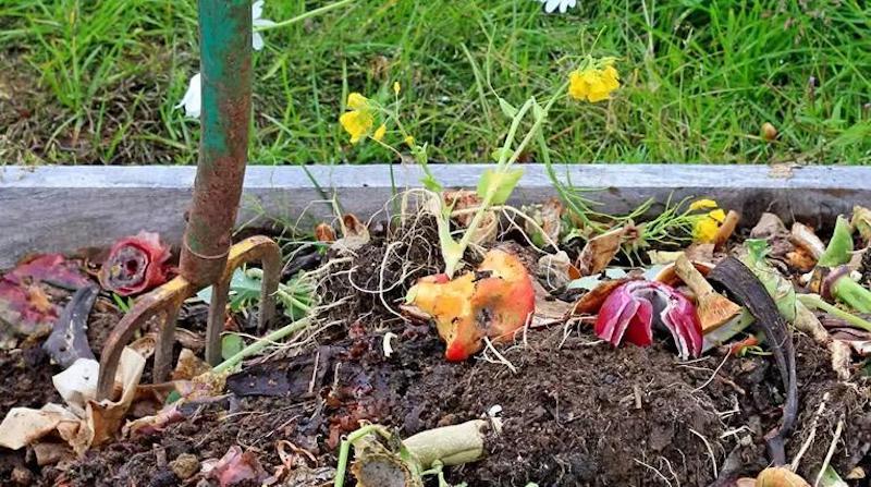 Ускоряем созревание компоста