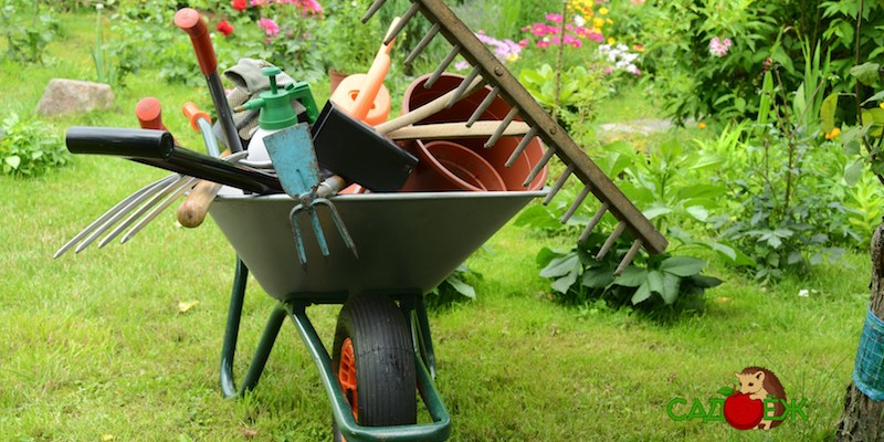 Как подготовить садовый инвентарь и инструмент к зиме?