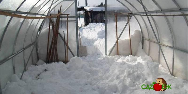 Нужен ли снег зимой в теплице?