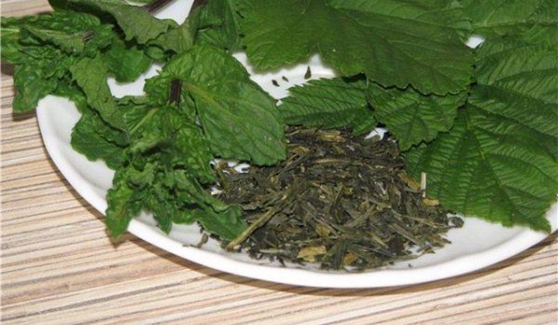 Сушеный лист смородины