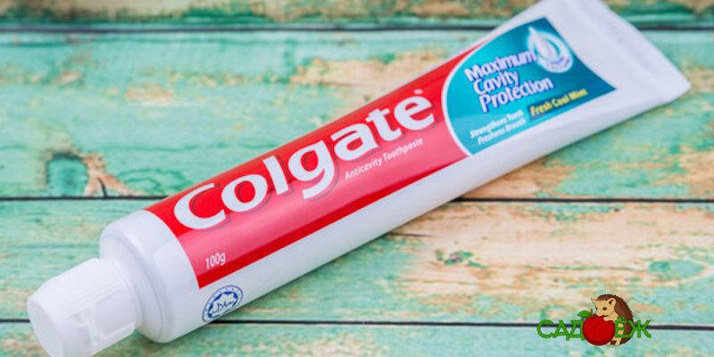 Как и для чего можно использовать зубную пасту в огороде?