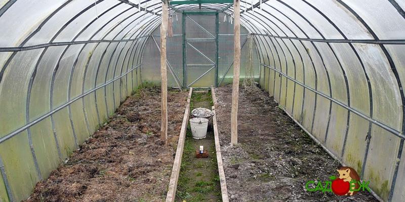 Обработка почвы от вредителей, грибков и болезней осенью
