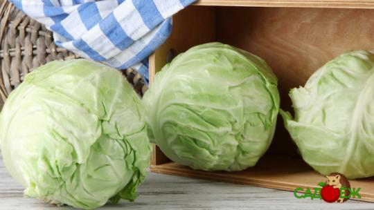 Хранение свежей белокочанной капусты