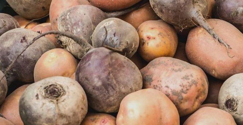 Хранение свеклы с картофелем