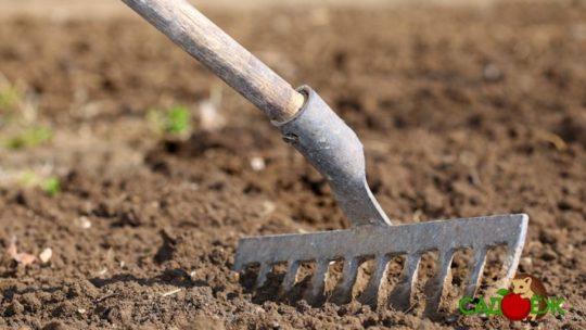Как прогреть почву
