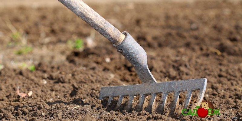 Как прогреть землю весной на даче?
