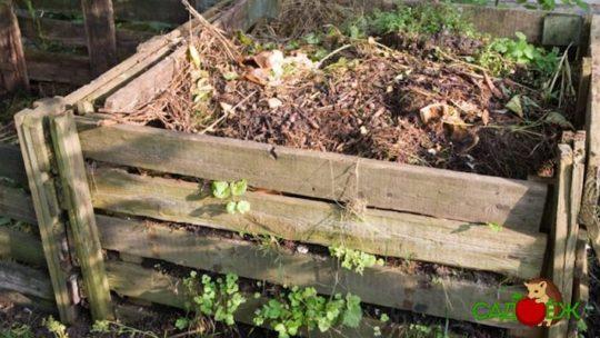 Как ускорить созревание компоста?