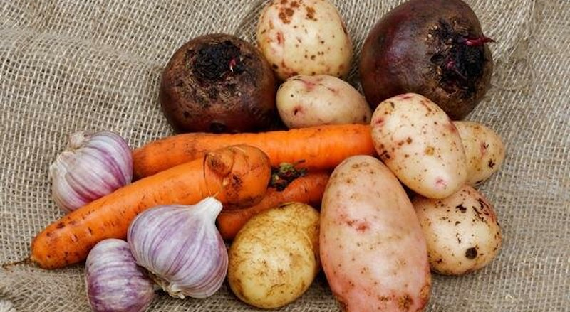 Хранение картофеля с другими овощами