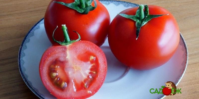 Почему у помидоров появляются белые жесткие прожилки?