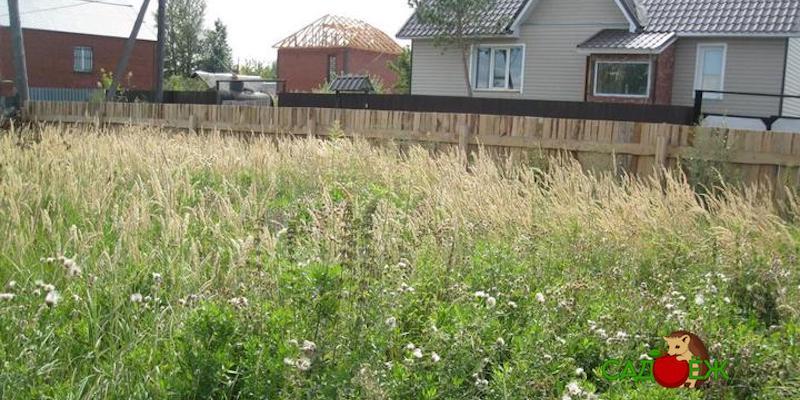 Могут ли отобрать участок за нескошенную траву?
