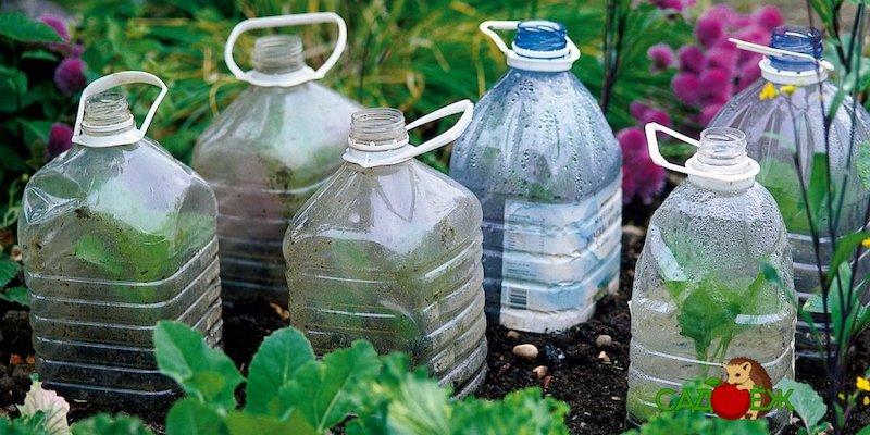 Что сделать из пластиковых бутылок на даче своими руками?