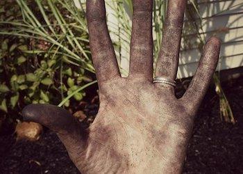 Как отмыть руки после работы в огороде?