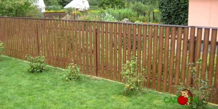 Какой должен быть забор между соседними дачными участками?