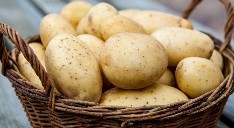 Мытый картофель для хранения