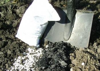 Удобрения под перекопку почвы осенью