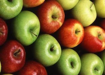 Сорта яблок для длительного хранения