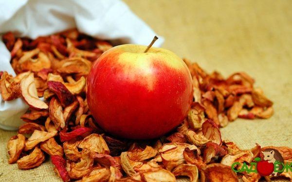 Как хранить сушеные яблоки в домашних условиях?