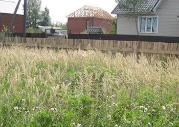 Могут ли отобрать участок за некошеную траву и сорняки?