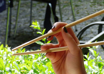 Полезное применение бамбуковых палочек для суши в огороде