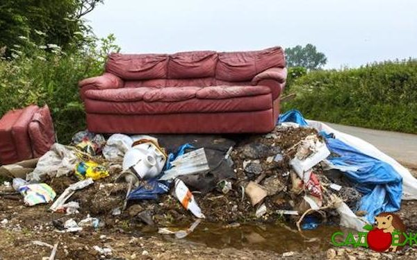 Что делать с мусором на даче: как и куда его утилизировать?