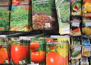 Как правильно выбирать семена и какие покупать не стоит?