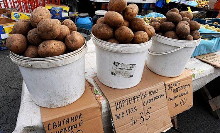 Можно ли продавать свой картофель