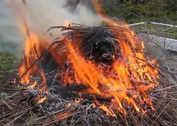 Как правильно сжигать мусор на дачном участке?