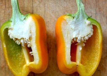 Как вырастить перец из семян покупного овоща?