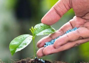 Совместимость удобрений друг с другом: что с чем нельзя вносить?