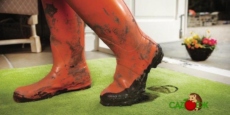 Как не тащить дачную грязь с огорода в дом?