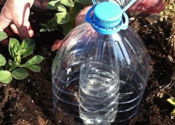 Как сделать капельный полив своими руками?