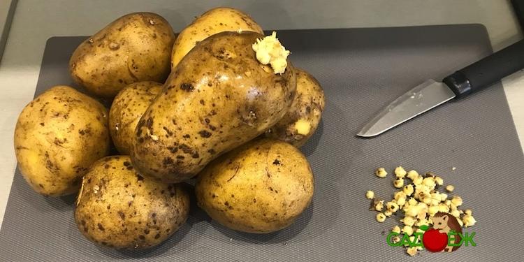 Лечебные свойства ростков картофеля и их применение в народной медицине