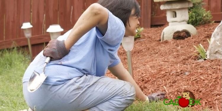 6 приспособлений, облегчающих труд в огороде: чтобы после работы в огороде не болела спина и колени