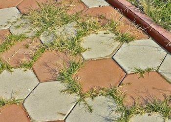 Как избавиться от травы и сорняков на садовых дорожках?