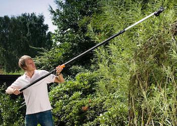 Как спилить высокие ветки на дереве без стремянки и лестницы?
