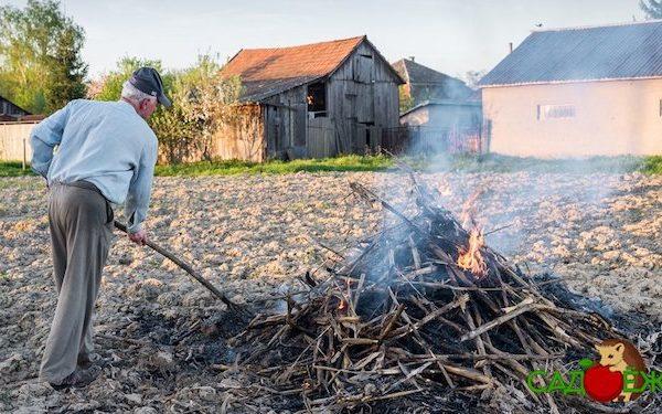 Можно ли разводить костры и сжигать мусор на своем дачном участке по закону с 2021 года?
