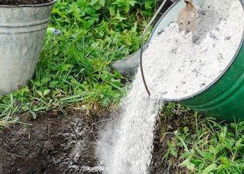 Как и чем раскислять почву в огороде?